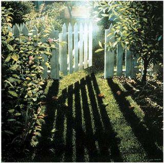 Open gate in garden