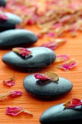 Petals on zen stones