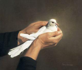 Holding white bird